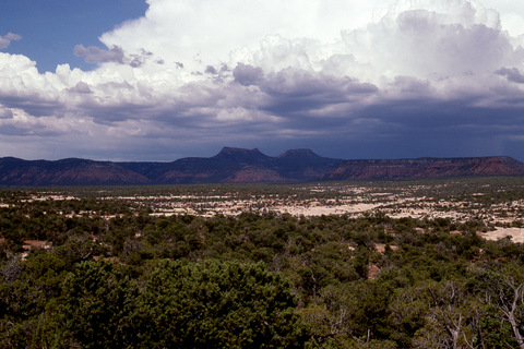 Bears Ears Buttes from Cedar Mesa, Natural Bridges National Monument, Utah