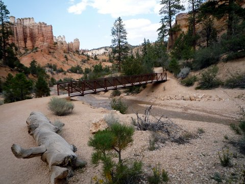 Footbridge, Water Canyon, Bryce Canyon National Park, UT