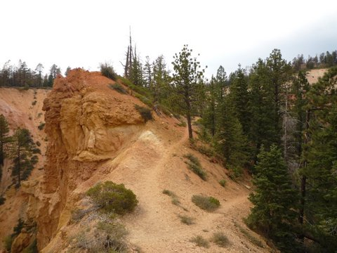 Whiteman Connecting Trail, Swamp Canyon, Bryce Canyon National Park, UT