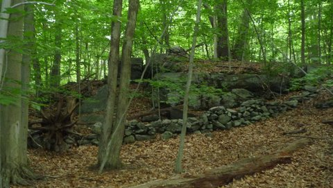 Stone wall and Boulders, Mianus River Gorge, Westchester County, NY