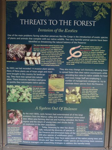 Threats to the forest poster, Mianus River Gorge, Westchester County, NY
