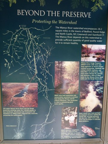 Protecting the Watershed Poster, Mianus River Gorge, Westchester County, NY