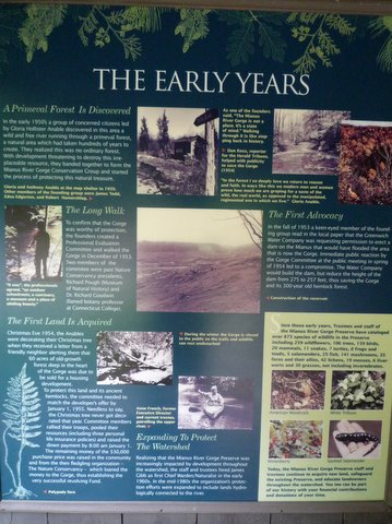 """Early years"" poster, Mianus River Gorge, Westchester County, NY"