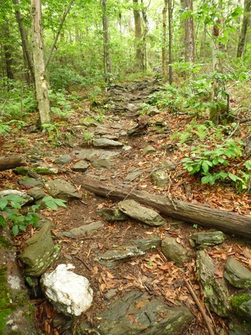 Appalachian Trail, Mt. Greylock State Reservation, MA