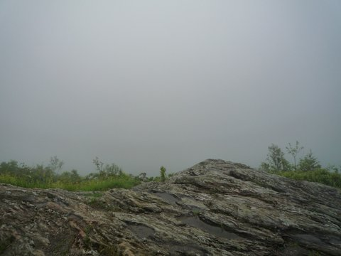 Foggy day at Stony Ledge Vista, Mt. Greylock State Reservation, MA