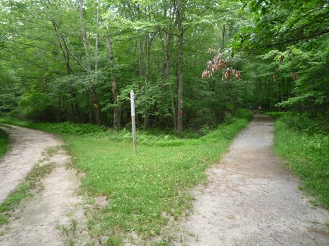 Trailhead, Ward Pound Ridge Reservation, Westchester County, NY
