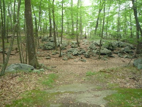 Leatherman Loop, Ward Pound Ridge Reservation, Westchester County, NY