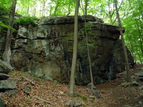 Rock wall, Ward Pound Ridge Reservation, Westchester County, NY