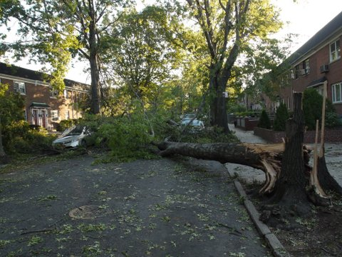 Storm Damage on 70th Ave., Kew Gardens Hills, NYC