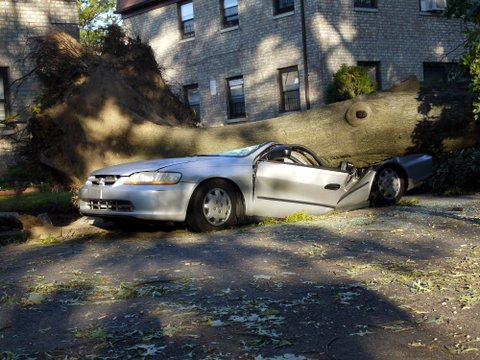 Flattened car, 137th St., Kew Gardens Hills, NYC