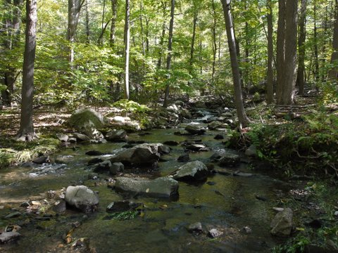 Stream from Upper Reservoir, Black Rock Forest, Orange County, New York