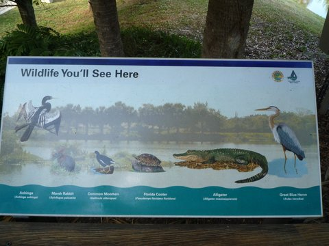 Wildlife poster, Wakodahatchee Wetlands, Palm Beach County, Florida