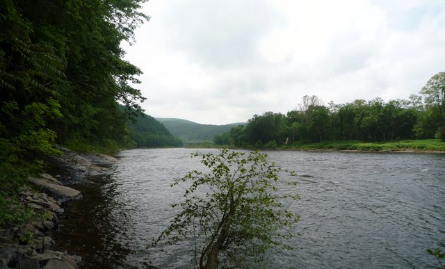 Shore of Delaware Water Gap