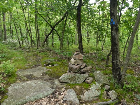 Intersection of Appalachian Trail with Sapphire trail, Harriman State Park, NY