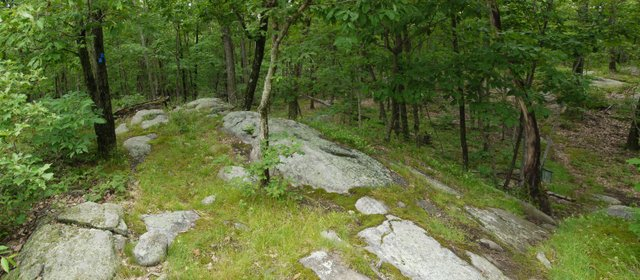 Appalachian Trail Intersects Blue Trail into Sterling Forest, NY