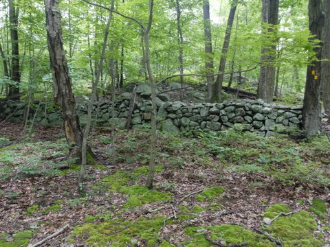 Stone walls, Sterling Forest State Park, NY