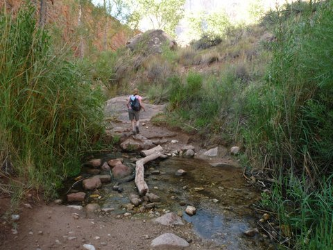 Stream across the Bright Angel Trail, Grand Canyon