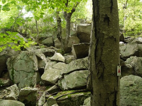 Tory Rocks, Stonetown Circular Trail, Passaic River Coalition, NJ