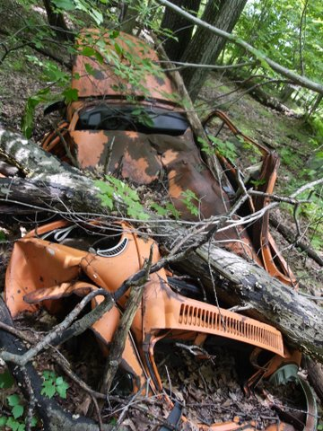 Crushed Volkswagen Beetle, Stonetown Circular Trail, Passaic River Coalition, NJ