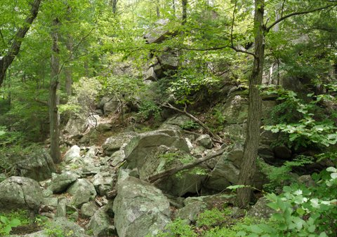 Scramble, Stonetown Circular Trail, Passaic River Coalition, NJ