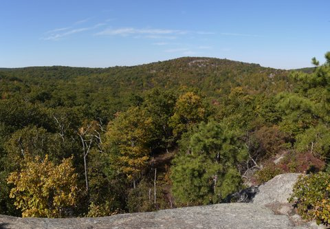 Scenic view from blue trail; Norvin Green State Forest, NJ