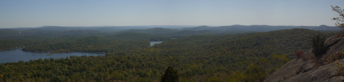 Panorama, Norvin Green State Forest, NJ