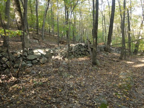 Stone wall, Norvin Green State Forest, NJ