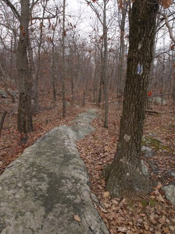 Bare rock, unmaintained trail to Old AT Vista, Wawayanda State Park, NJ