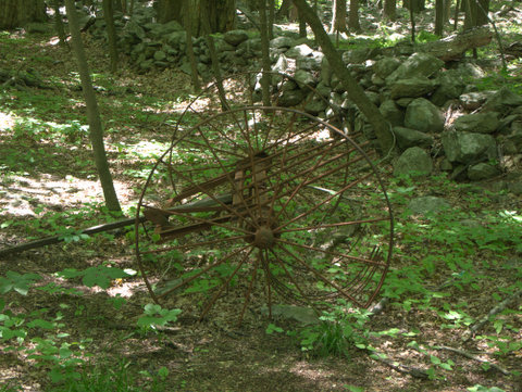 Old plow, East Mountain Loop Trail, Fahnestock