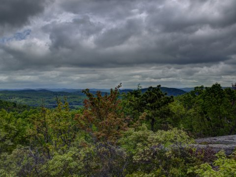 HDR of Scenic View, Norvin Green State Forest, NJ