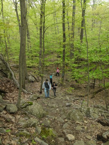 Hikers ascending blue trail, Norvin Green State Forest, NJ