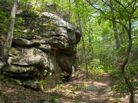 Rock wall on Ambler Trail, Devil's Den Preserve