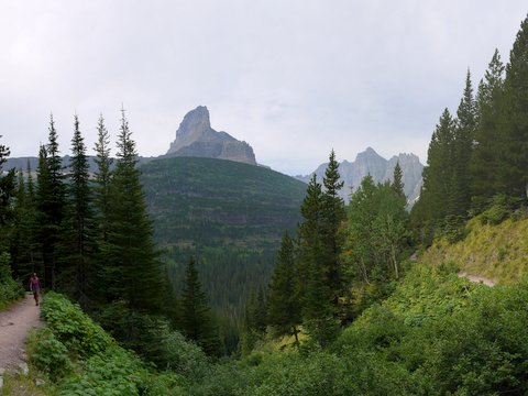 View from Ptarmigan Trail, Glacier National Park, Montana