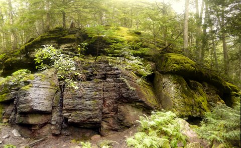 Rock Wall, Trail of the Cedars, Glacier National Park, Montana