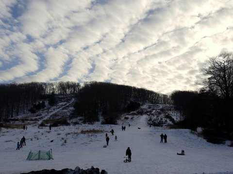 Sledding at Silvermine Picnic Area, Harriman State Park, NY