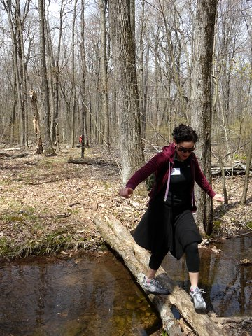 Crossing a Brook, Stokes State Forest, NJ