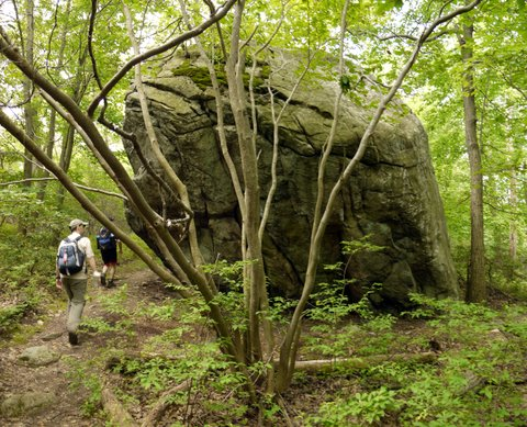 Glacial erratic on the Seven Hills Trail, Harriman State Park, Rockland County, NY