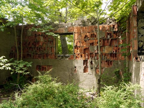 Interior of ruin at Pine Meadow Lake, Harriman State Park, Rockland County, NY