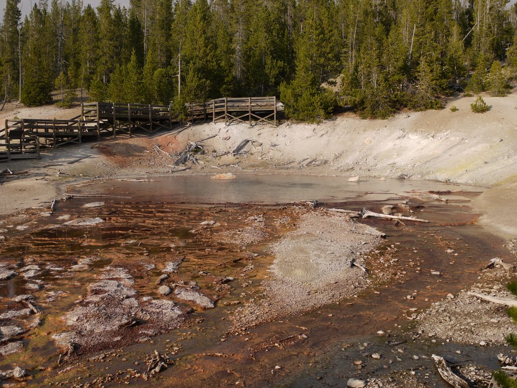 Echinus Geyser, Norris Geyser Basin, Yellowstone National Park, Wyoming