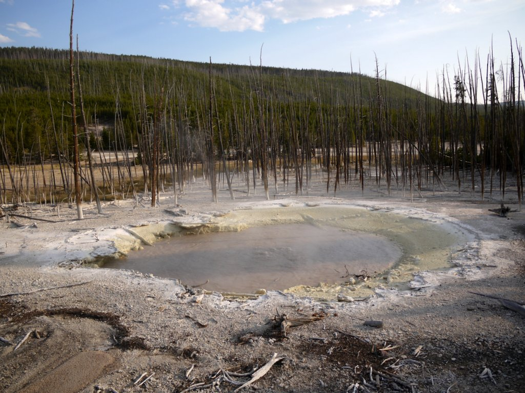 Cistern Spring, Norris Geyser Basin, Yellowstone National Park, Wyoming