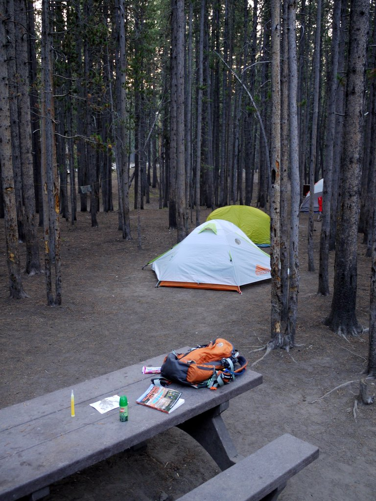 Campsite, Canyon Campground, Yellowstone National Park, Wyoming