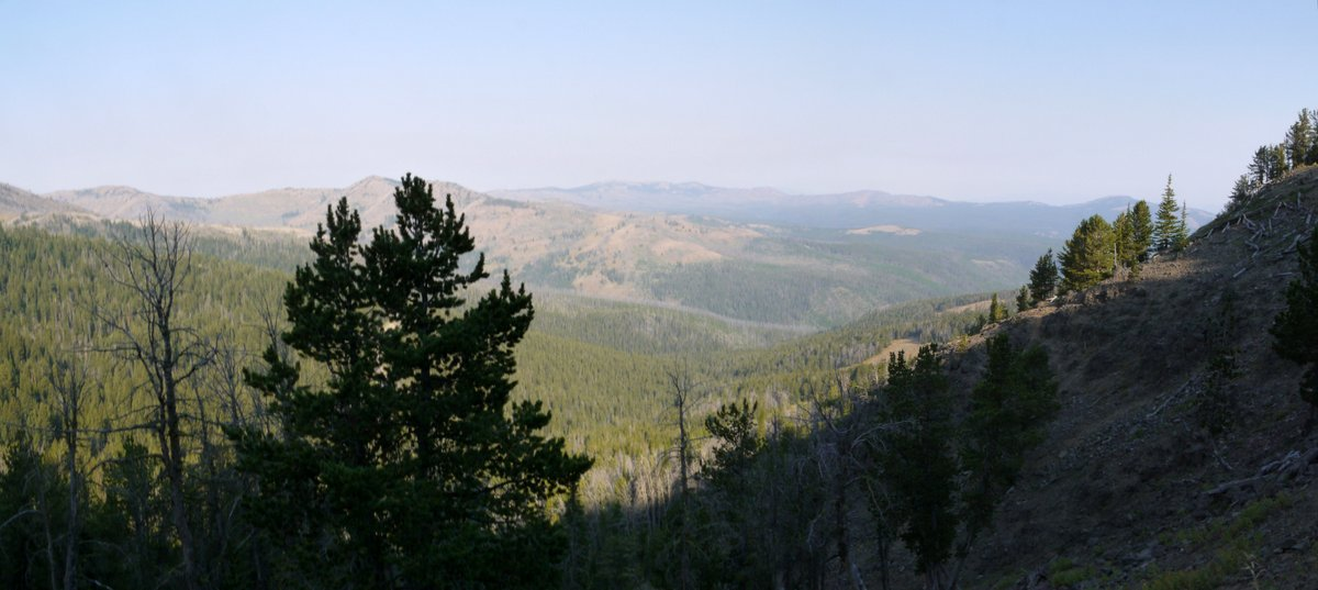 View from Mt. Washburn, Yellowstone National Park, Wyoming