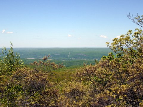 Eastern View from the Monument Trail, High Point State Park, Sussex County, New Jersey