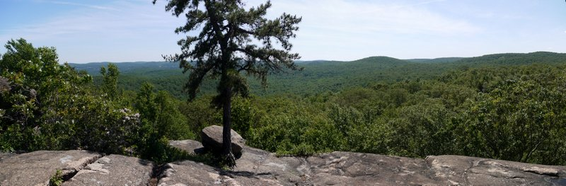 Scenic view, Norvin Green State Forest, Passaic County, New Jersey
