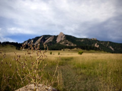 Flatirons across the meadow, Boulder Mountain Park, Boulder, Colorado