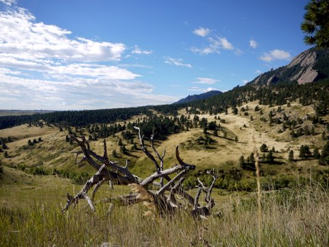 View from N.C.A.R. trail, National Center for Atmospheric Research, Boulder, Colorado