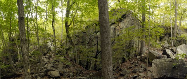 Rock Wall in front of Kitchen Stairs, Harriman State Park, Rockland County, New York