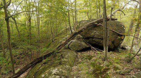 Scramble Out of Valley of Dry Bones, Suffern-Bear Mountain Trail, Harriman State Park, Rockland County, New York