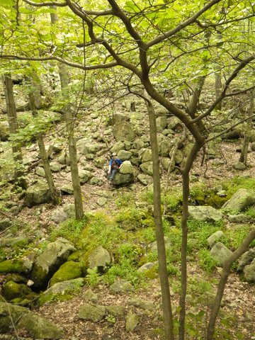 Batya in the Valley of Dry Bones, Suffern-Bear Mountain Trail, Harriman State Park, Rockland County, New York