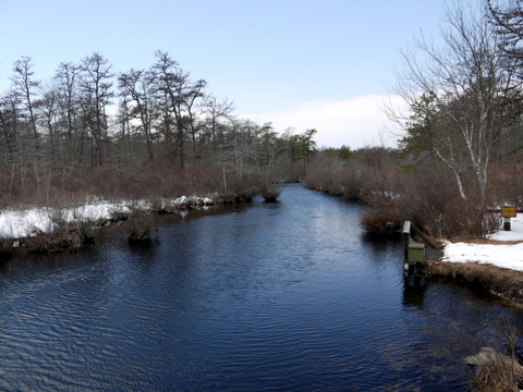 Connetquot River from Bunces Bridge, Connetquot River State Park Preserve, Suffolk County, New York